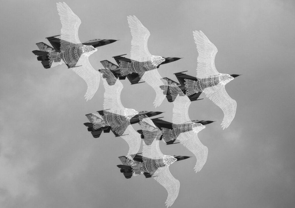 鳥が自由に飛べる平和な空を目指して。 世界から戦争がなくなるように、空を飛ぶ戦闘機が自由に飛ぶ鳥になるように願って描きました。