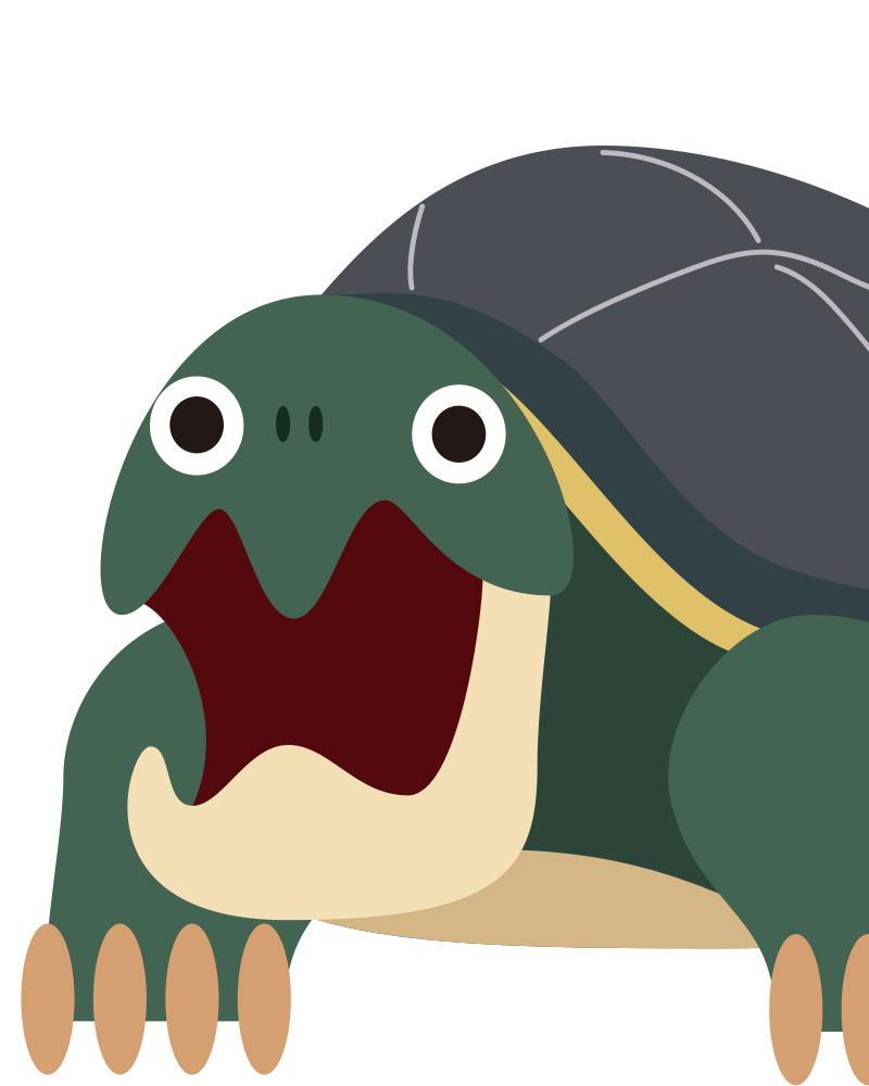 カミツキガメのイラスト。