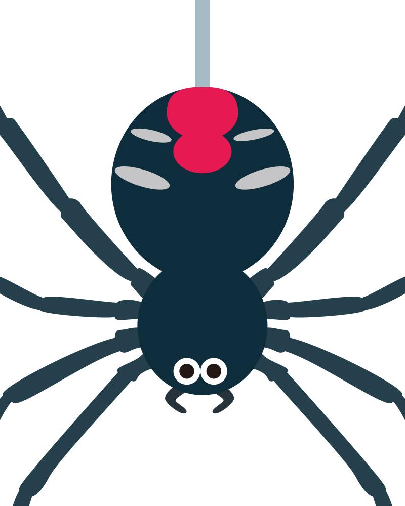 セアカゴケグモのイラスト。